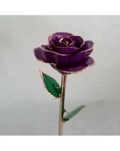 Rose mauve et or 24k