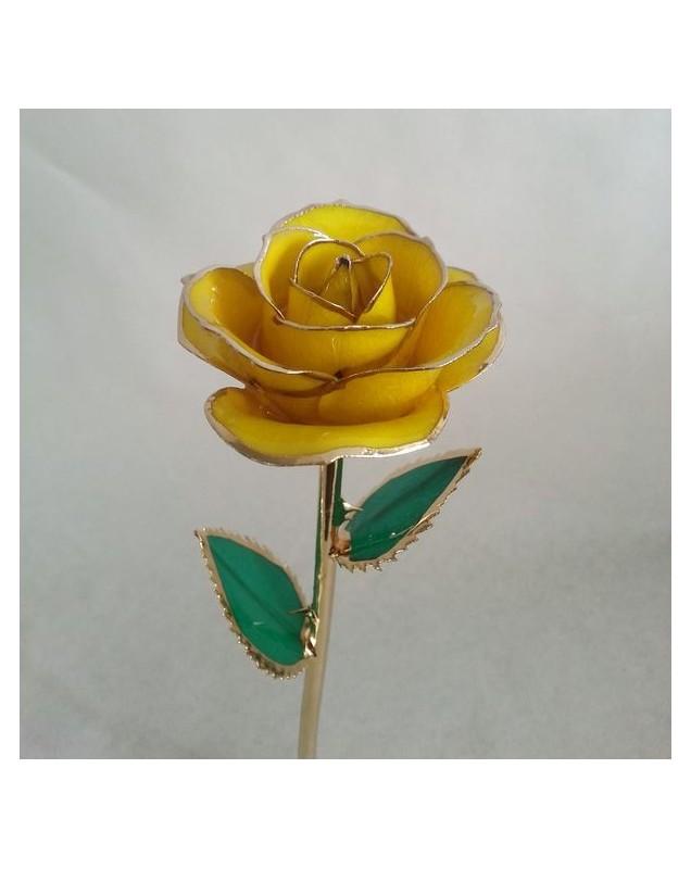 Rose jaune 24k