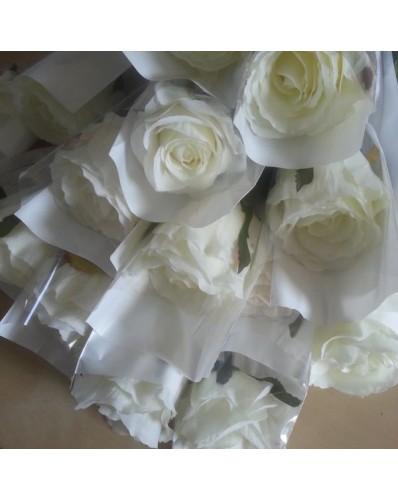 Rose blanche emballée individuellement