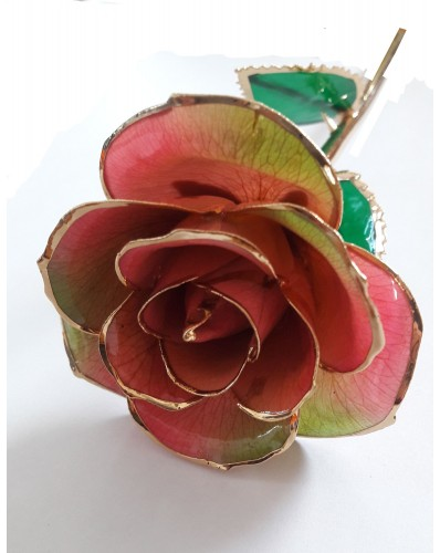 Rose en or 24k couleur rose